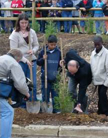 Students planting trees.