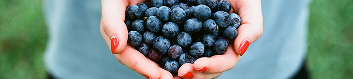 Header image of a person holding fresh blueberries.
